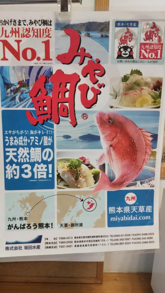 みやび鯛2