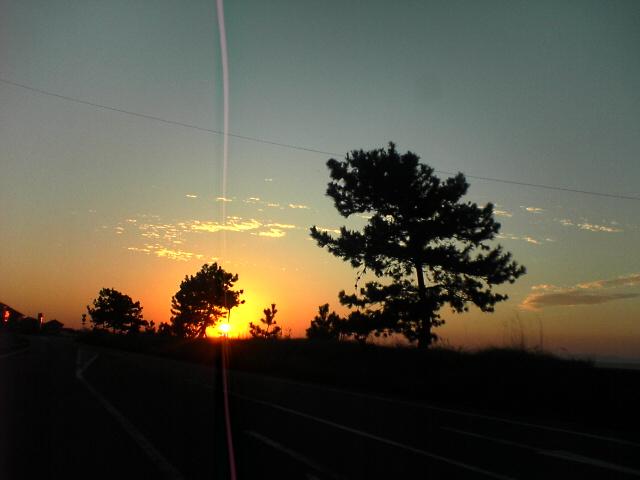夕日2(坂瀬川沿い)